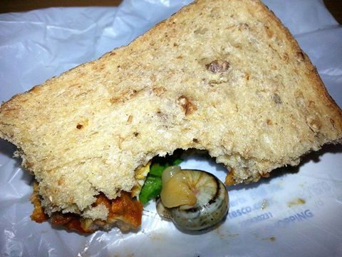 Mujer Finds Live Snail In Her Chicken Tikka Sandwich